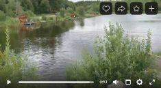 Зарыбление водоёма Косачи